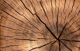 houtkachel stoken met droog hout